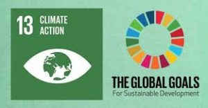 climate action 13